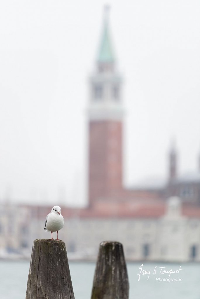 Venise-0117.jpg