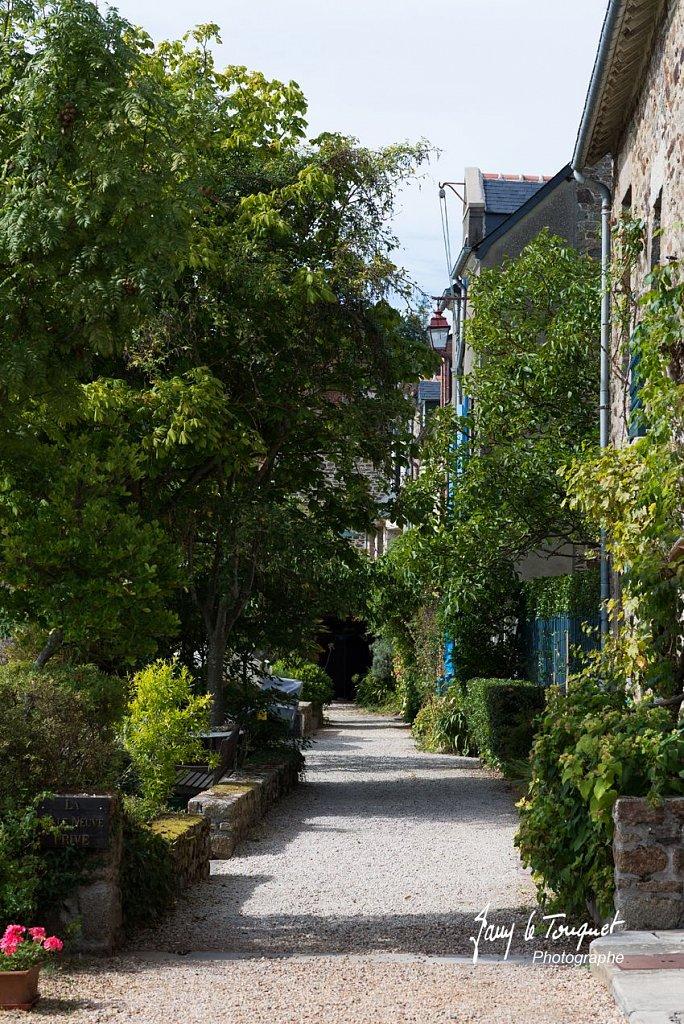 Ille-et-Vilaine-0147.jpg