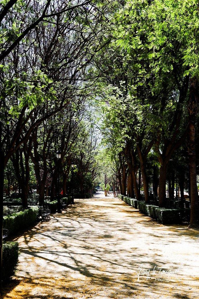 Seville-0024.jpg