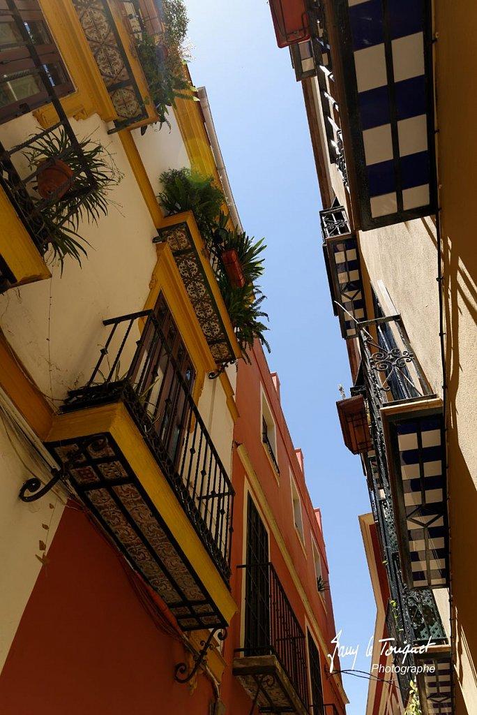 Seville-0089.jpg