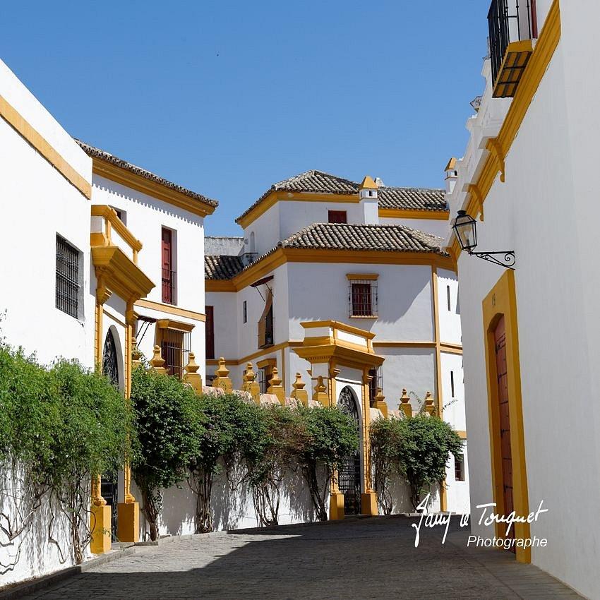 Seville-0145.jpg