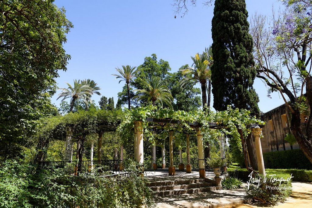 Seville-0191.jpg