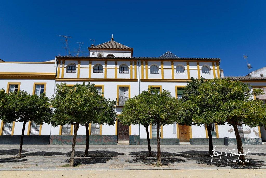 Seville-0192.jpg