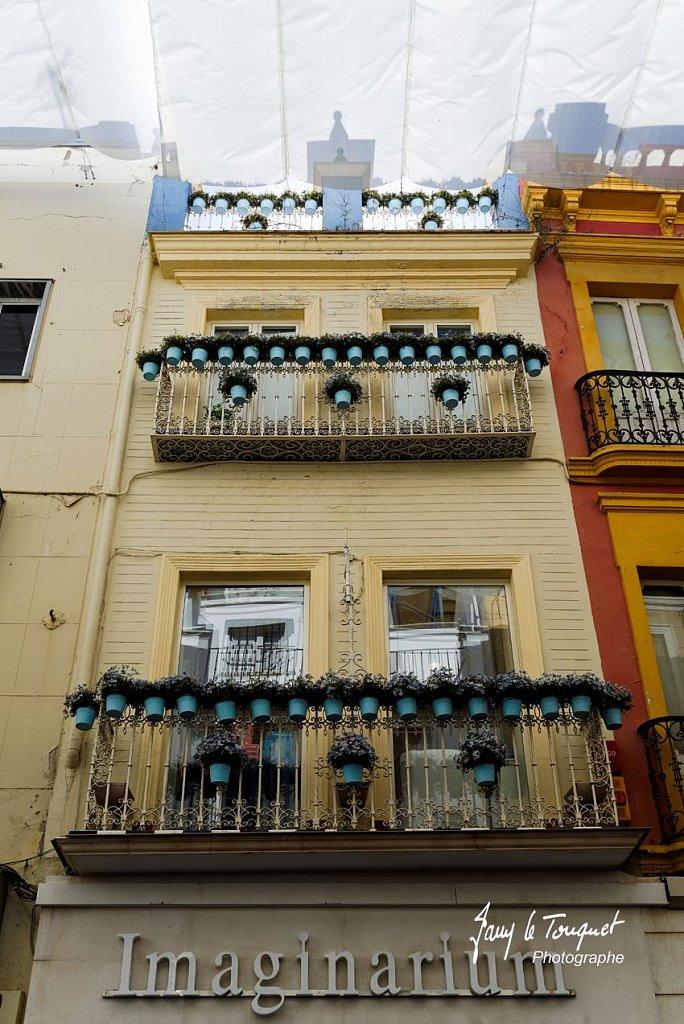 Seville-0195.jpg
