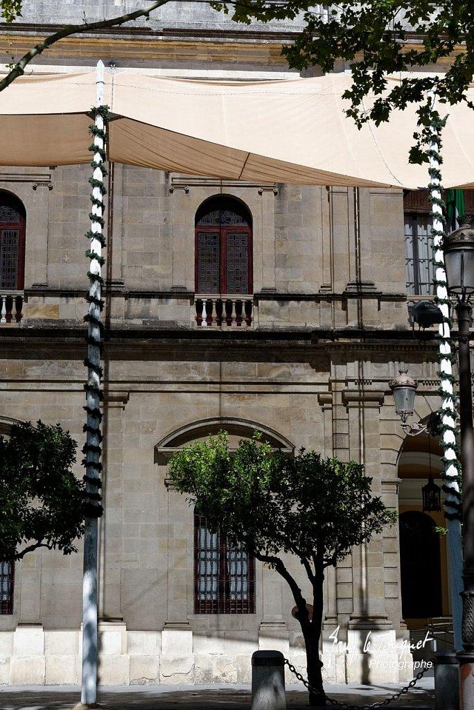 Seville-0196.jpg