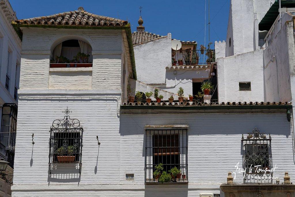 Seville-0226.jpg