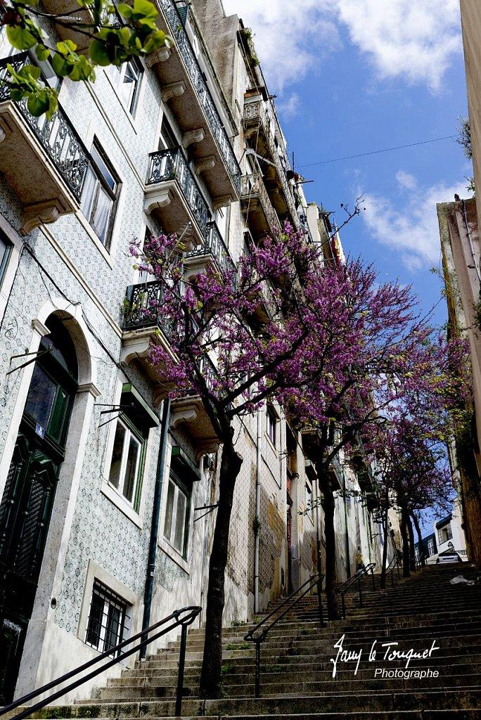 Lisbonne-0001.jpg