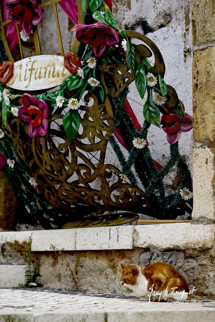 Lisbonne-0051.jpg