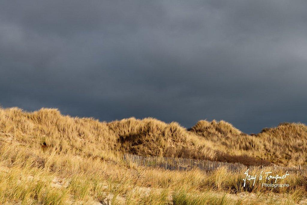 Berck-sur-Mer-0500.jpg